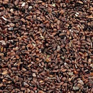 Семена агератума