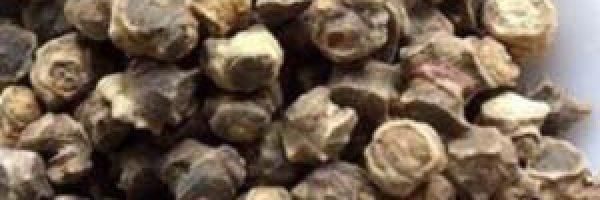 посевные-семена-столовой-свеклы